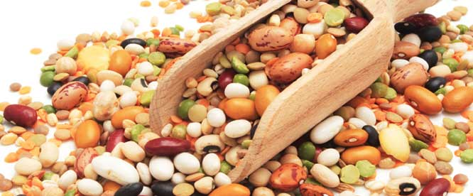 Legumes  - Heart Healthy Diet