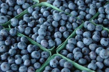 blueberries - Heart Healthy Diet