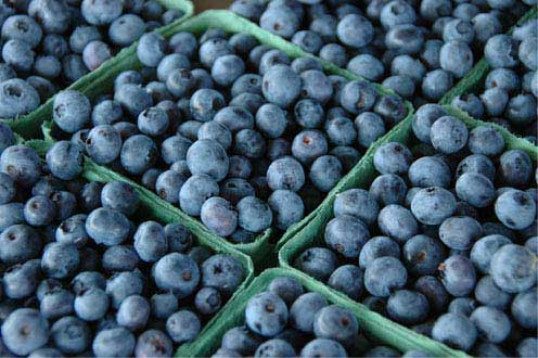 blueberries  - Heart Healthy Diet