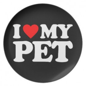 10 Must Have Products For Pet Owners- Thats my top 10